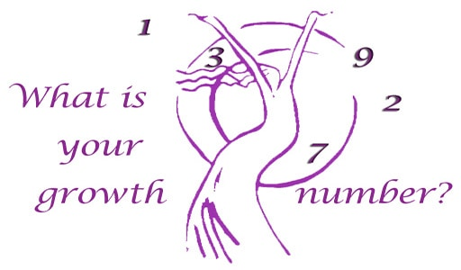 What is Your Growth Number in Numerology?